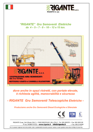 Grues mobiles industrielles Rigante GR 50